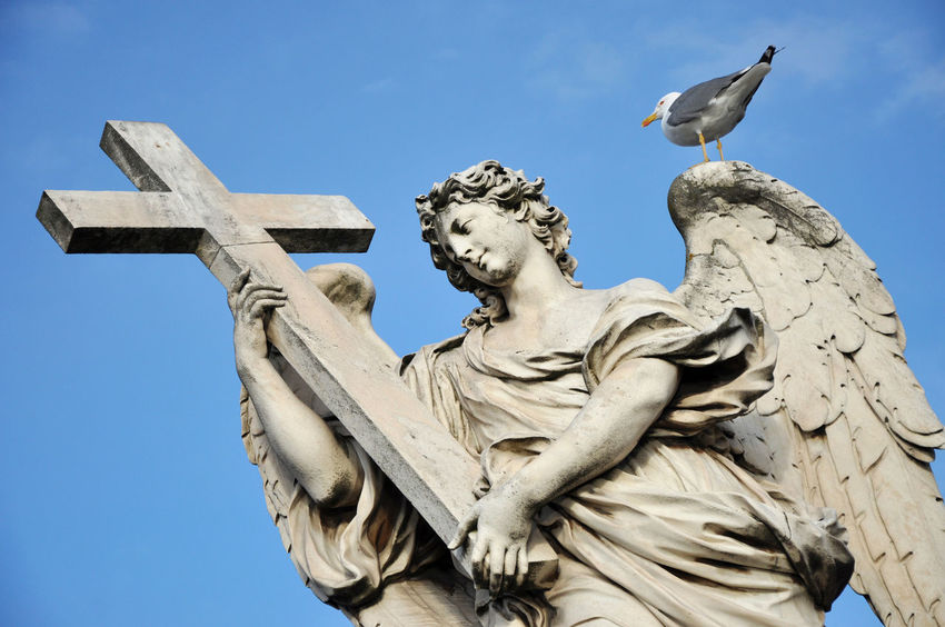 Angel with the Cross. Statue on the Ponte Sant' Angelo bridge, Rome Antique Bernini Catholic Cross Roma Statue Angel Angel Wings Archangel Art Carving Castle Sant'angelo Italy Landmark Low Angle View Monument Religion Religious  Religious Architecture Sculpture Seagull Sky Spirituality Statue Wings