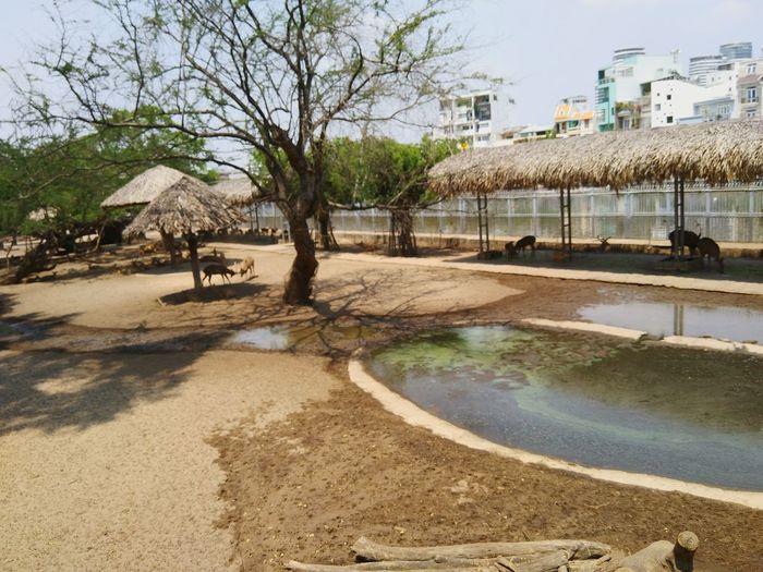 Thảo Cầm Viên Động Vật First Eyeem Photo