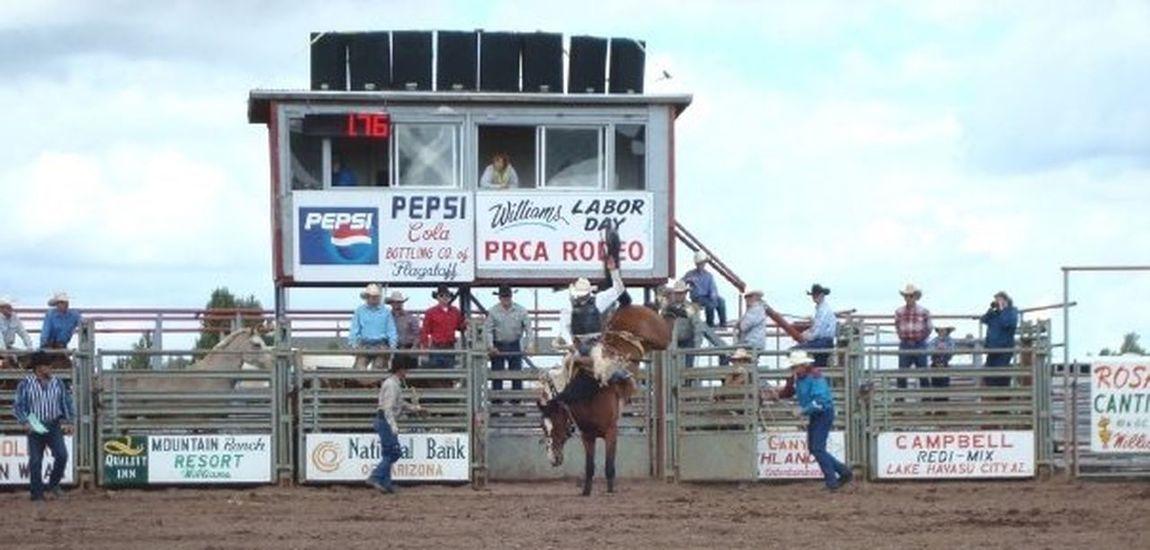 Arizona Williams Rodeo Cowboy