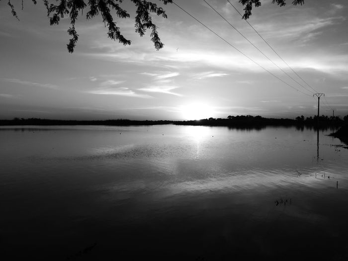 Black sun Water Tree Lake Reflection Silhouette Sky Landscape Cloud - Sky