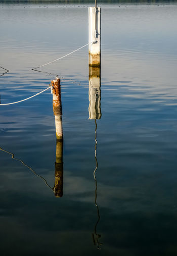 crossing surface Reflection Perspective Perspectives on Nature Nature Bad Saarow Brandenburg Germany Deutschland Lake See Water Reflection Sky EyeEmNewHere