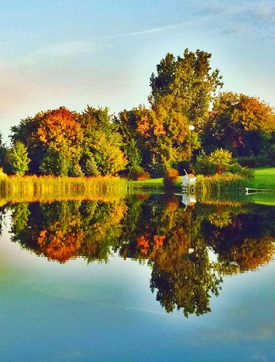 Places I run My Running View Hugging A Tree Water Reflections The Great Outdoors - 2015 EyeEm Awards Fall_collection Fall Beauty EyeEm Nature Lover