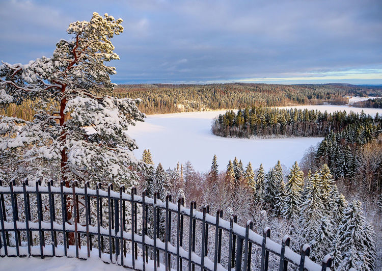 Winter landscape at Aulanko nature park in Hämeenlinna, Finland. Cold Temperature Winter Snow Water Tranquility Scenics - Nature Beauty In Nature Tranquil Scene Tree Nature Lake Non-urban Scene Cloud - Sky Sky No People Day Plant Barrier Outdoors Nature Park