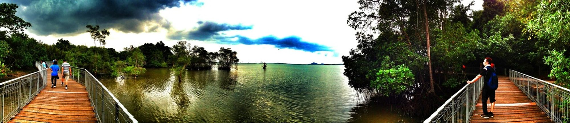 Panorama view of the mangroves of Chek Jawa at Ubin Island, Singapore before rain. The people at right hand side is my hubby.
