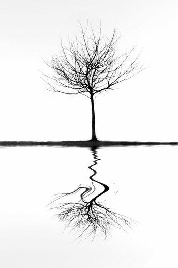 Relative Objectivity... Surrealism EyeEm Bnw Blackandwhite NEM Black&white NEM Submissions Shootermag AMPt_community NEM Landscapes Nature Conceptual
