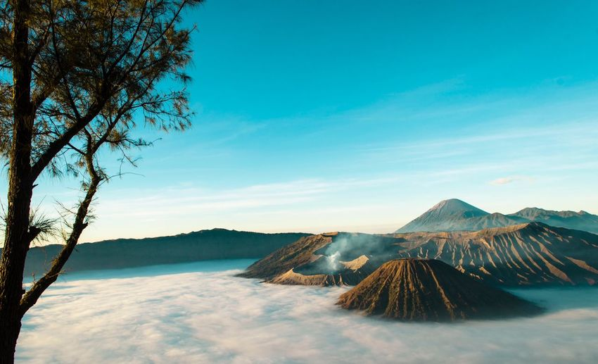 Scenery of Mt Bromo during sunrise. EyeEm Selects Misty Morning Travel Destinations Bromo Mountain Amazing View Bromo Mountain Indonesia Valcano Bromo Tengger Semeru National Park Travelphotography Sky Scenics - Nature Tranquil Scene Nature Beauty In Nature Cloud - Sky Tranquility Plant Landscape Land Tree No People Mountain Blue Day Cold Temperature Environment Snow Non-urban Scene Outdoors