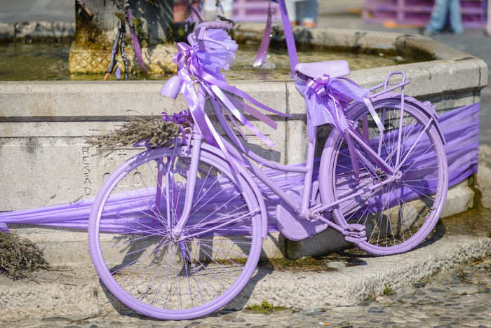 Erve Erve Miozzo Photo Miozzo Bicycle Bicycle Rack Flower Land Vehicle Mode Of Transport No People Outdoors Pourple Purple Stationary Transportation