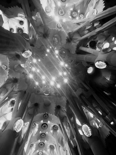 A Sagrada Família Ceiling Natural Light Gaudí Sagrada Familia Black & White Blackandwhite Photography Holidays In Catalonia Gaudi Cathedral Holidays In Spain