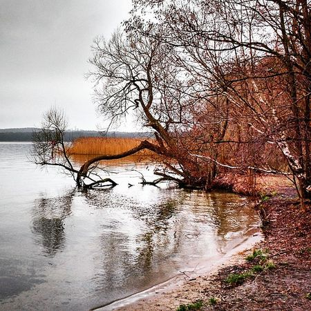 Vamos a la playa??? Sqñ Beach Lake Winter Berlin Germany Igs_world Igs_germany Igs_deutschland Igs_berlin Igs_europe Insta_deutschland Insta_germany Insta_europe