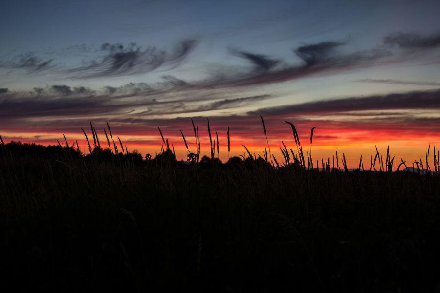 A July Sunset Beautiful July 2015  Sunset Stanwood Washington Pacific Northwest  PNW Northwestsunsets Northwestisbest