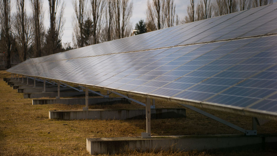 Green Energy Solar Solar Panel Alternative Energy Architecture Built Structure Day Electrical Power Electricity  Energy Environment Environmental Conservation Field Fuel And Power Generation Go-west-photography.com Land Landscape Nature No People Outdoors Renewable Energy Roof Sky Solar Energy Solar Panel Sustainable Resources Technology Tree