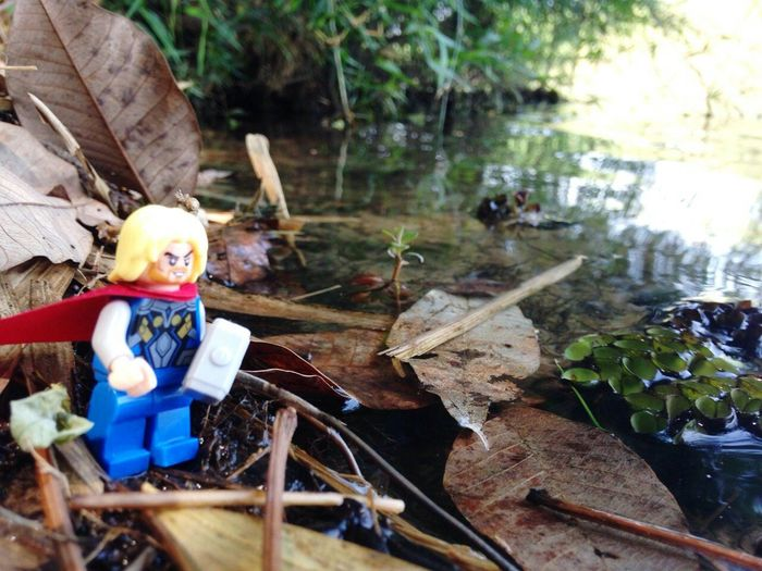 What are you doing now ? Thailand Thor  Enjoying Life Travel Goodday Relaxing Lego Minifigures Nature