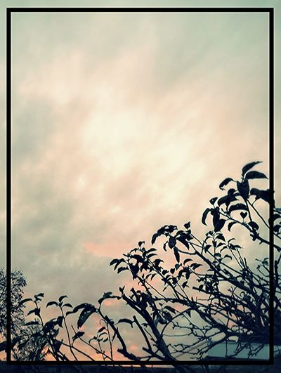 Sky Friesland Sky