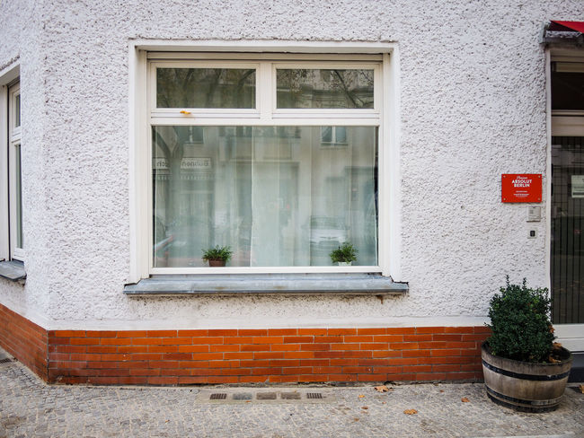 Architecture Autumn Autumn Colors Berlin Berliner Ansichten Building Exterior Built Structure City Cityscapes Coolpix7800 Day Domestic Animals Glass - Material Herbst Herbststimmung House Nikon Outdoors Potted Plant Window Window Frame