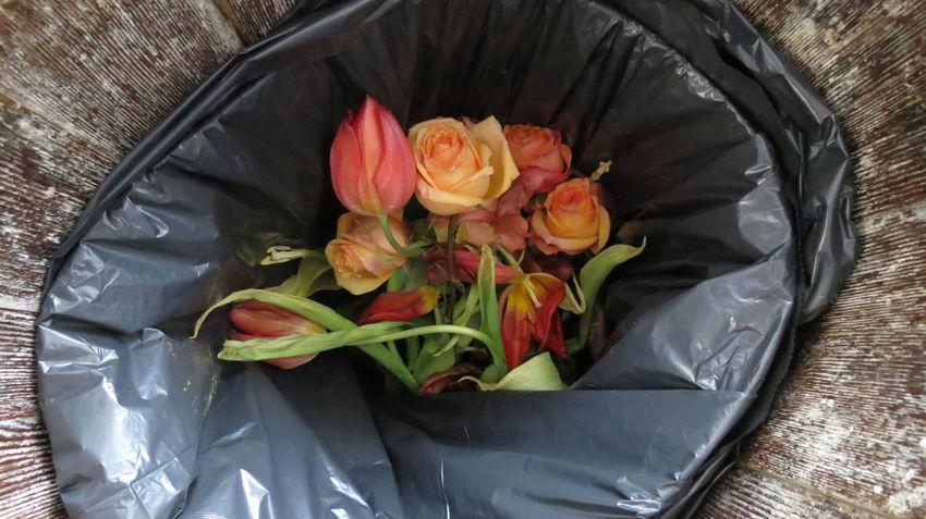 Bouquet Broken Heart Difficult Flower Flower Head Flowers Fragility Immortal Lonely Nature No Love Petal Rose - Flower Roses Trash