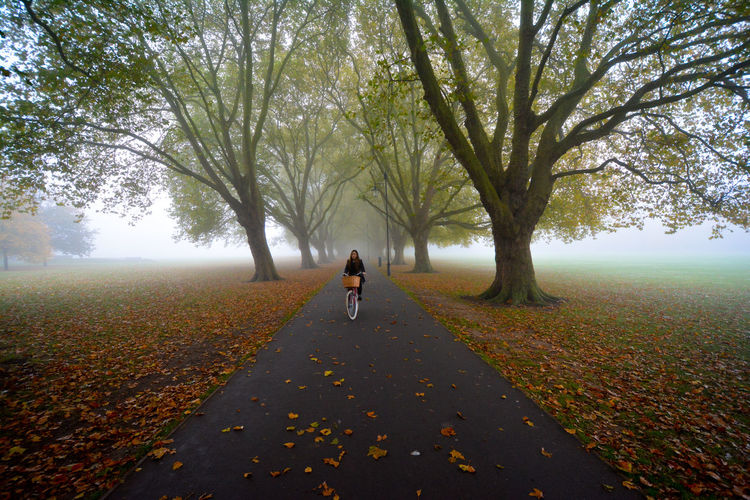 Woman riding bicycle on road against trees during autumn