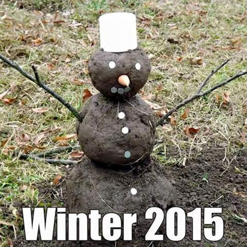 Brown Funny Not My Picture Snowman Winter?