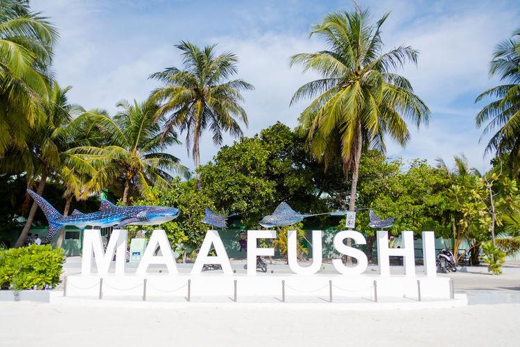 Maafushi,