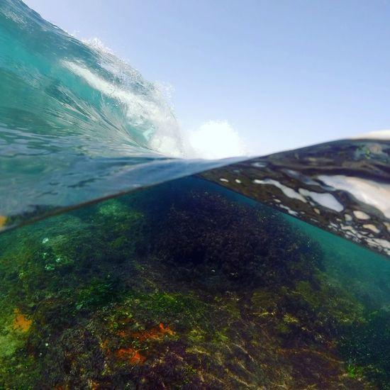 Surf Underwater Photography Underwater Reef