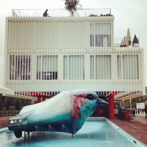 Italy Expomilano Expomilano2015 Expo 2015 Czechrepublicpavilion Czechpavilion Architecture Swimming Pool Bird