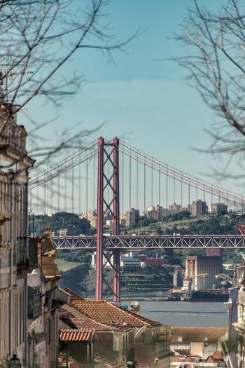 Bridge 25 De