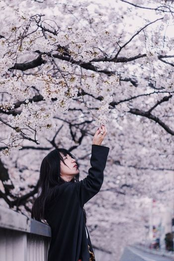 Woman standing by cherry blossom tree