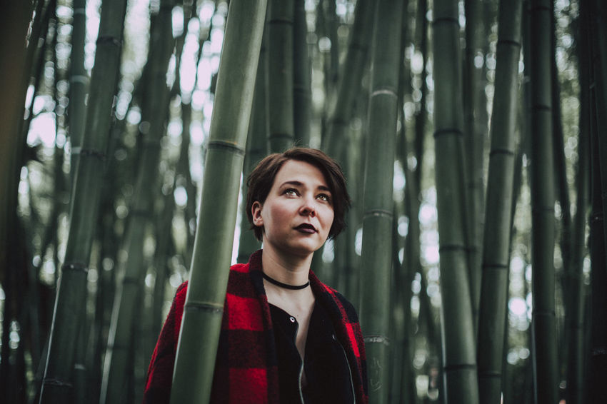 Fashion Wanderlust Bamboo - Plant Bamboo Grove Beauty In Nature Day Focus On Foreground Forest Front View Nature One Person Outdoors People Portrait Real People Tree Tree Trunk Young Adult Young Women