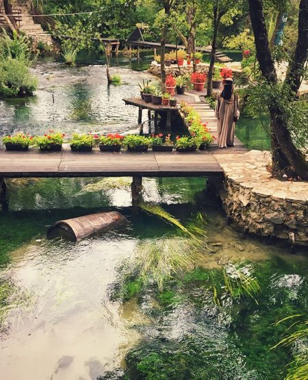 An arab tourist Traditional Clothing Arabic Tree Water Day Real People Nature Growth Reflection Flower Outdoors Plant Beauty In Nature Footbridge Women People