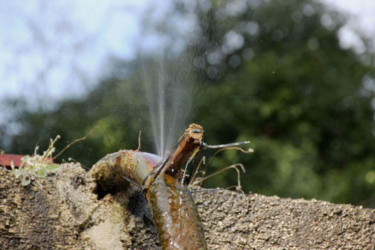 Defekt No People Reparatur Stopfen Undicht Waterline