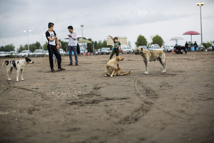 People with dog on sand