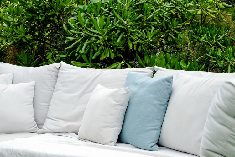 White sofa on bed against plants