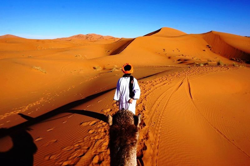 Morocco Erg Chebbi Desert Sunset Camel Shadow Dunes Orange Sand NOMAD Visual Feast Neighborhood Map
