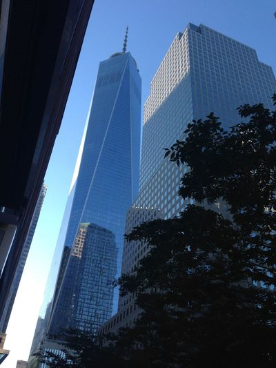 World Trade Center One Architecture Building Exterior Built Structure City Cityscape Clear Sky Day Low Angle View Modern No People Outdoors Sky Skyscraper Tower Tree World Trade Center One