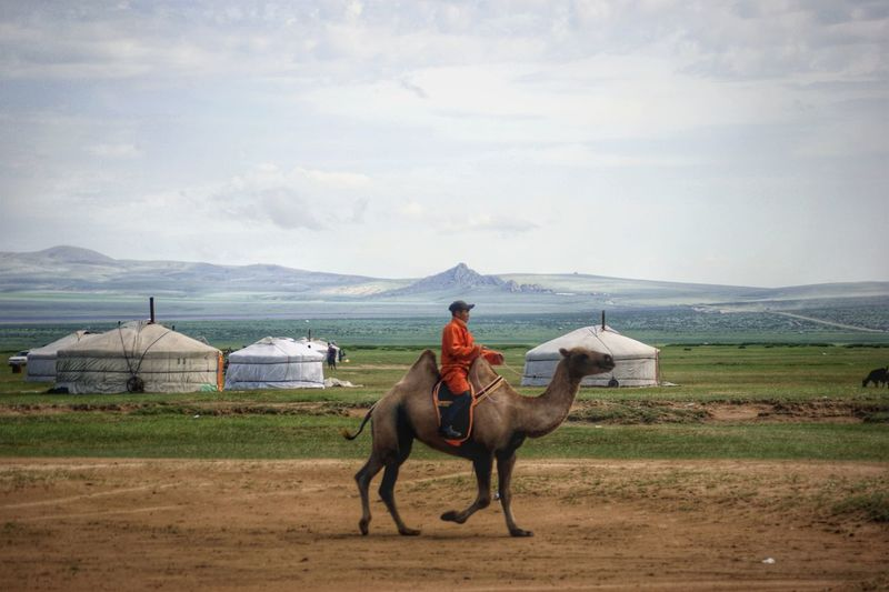 Nomadic Nomadic Life Mongolia Yurt Real People Монгол улс гэр Steppe Outdoors Day Camel Riding Deel дээл Horseback Riding Horse Sky