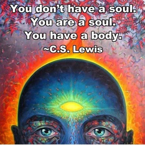 soul Quotes Dailyquote