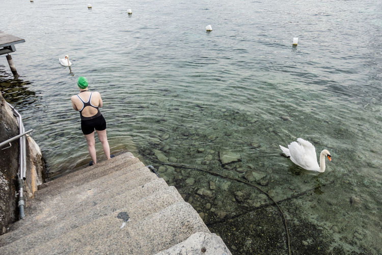 The Art Of Street Photography Water One Person Nature Leisure Activity Real People Lifestyles Animals In The Wild High Angle View Outdoors Swimming Swimsuit Lake Geneva