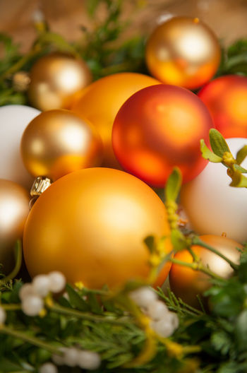 Close-up of baubles on plants during christmas