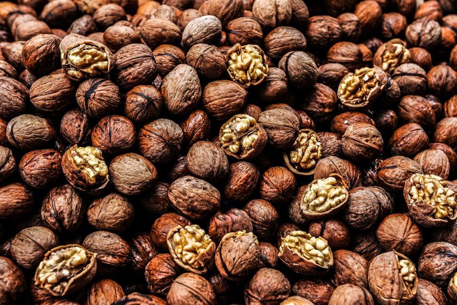 Walnuts Walnuts Nut Harvest Time Shell Eat Protein Unsaturated Corn Food Natural Seed Brown Product Sell