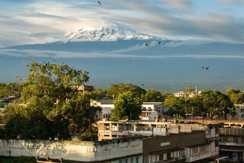 Kilimanjaro from Moshi Tanzania Adventure Africa Kilimanjaro Moshi Mountain Nature Outdoors Peak Scenics Town Volcano