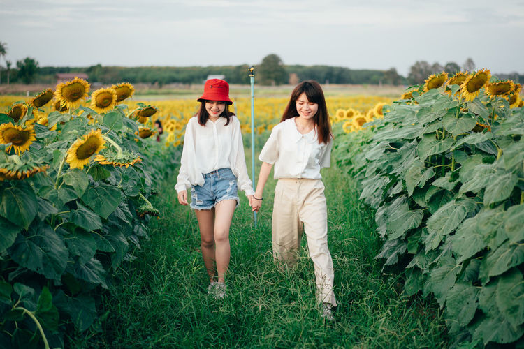 Female Friends Holding Hands While Walking At Sunflower Farm