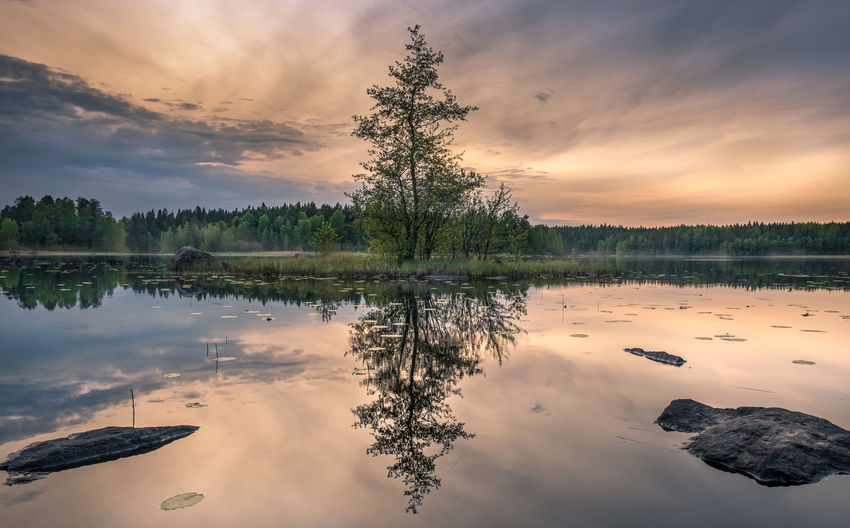 Scenic landscape with idyllic small island at summer night in National Park, Liesjärvi, Finland Atmospheric Mood Beauty In Nature Cloud - Sky Evening Focus On Foreground Foggy Lake Landscape Light Morning Nature Night Outdoors Peaceful Reflection Scenics Sky Standing Water Stone Summer Sunset Tranquil Scene Tranquility Tree Water Live For The Story The Week On EyeEm