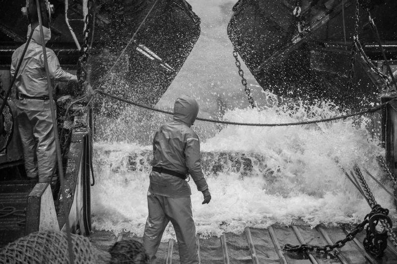 Rear View Of Men Working In Water