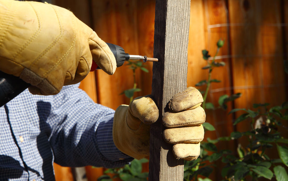 Closeup Day DIY Electric Drill Fence Fingers Garden Project Gripping Hands Holding Home Owner Man Natural Light Outdoors Outdoors Photography Using Tool Wood Piece Work Gloves Yard Maintenance