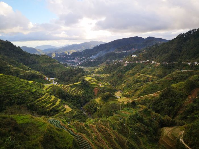 Banaue Rice Terraces - staying majestic in 2018 2018 In One Photograph Tea Crop Tree Mountain Beauty Rural Scene Agriculture Tree Area Terraced Field Lush - Description Social Issues Cultivated Land