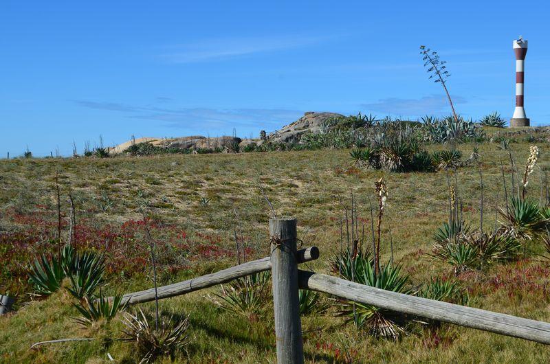 Cabo Polônio, Uruguai Cabo Polonio - Uruguay Farol Paceful No People Beach Blue Sky