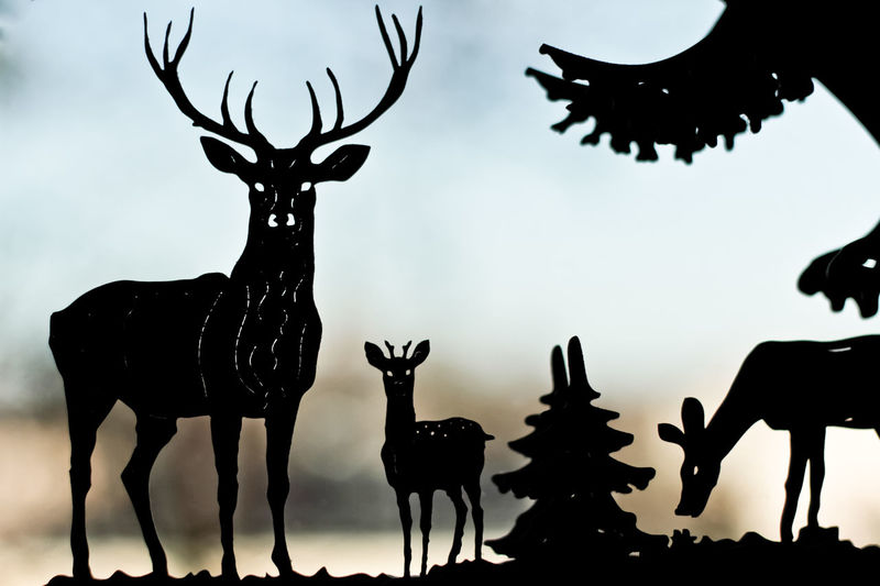 Animal Representation Animal Themes Close-up Day Deer Low Angle View Mammal No People Outdoors Reindeer Silhouette