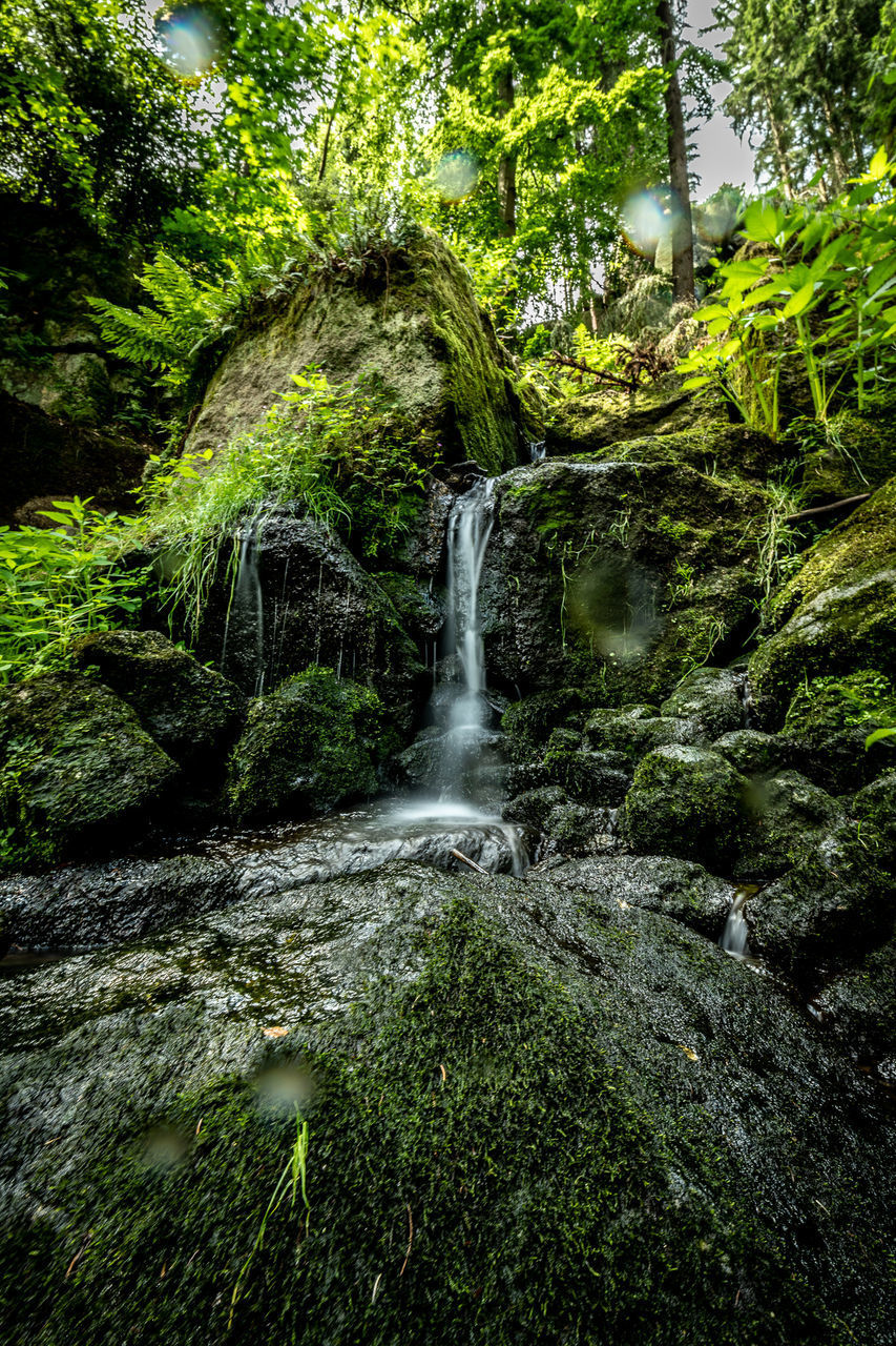 plant, tree, forest, beauty in nature, land, water, scenics - nature, green color, flowing water, moss, blurred motion, solid, long exposure, motion, nature, rock, no people, rock - object, growth, rainforest, outdoors, flowing, power in nature