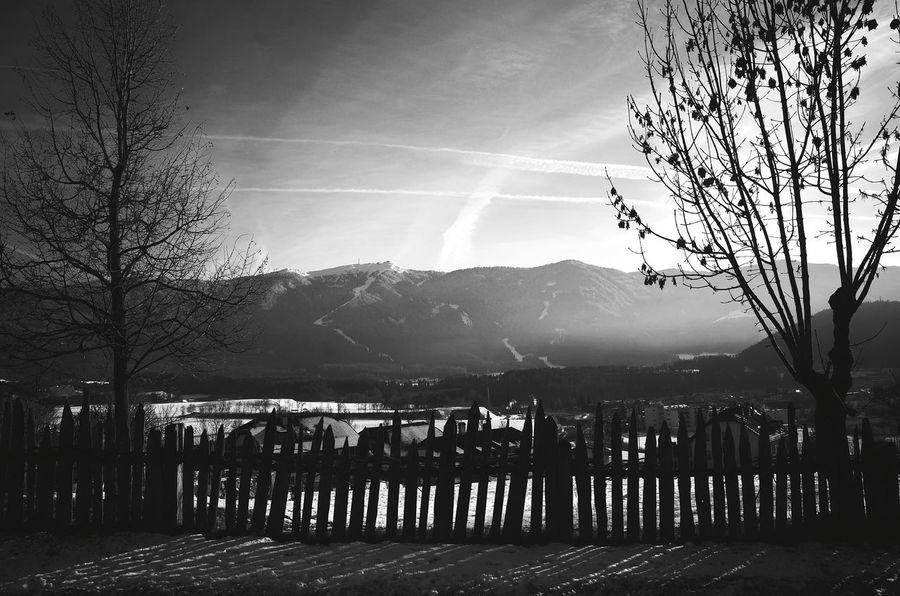 Nature No People Tree Outdoors Sky Day Miles Away Dolomites South Tyrol Südtirol Urban Landscape Country Living Scenics Trees Nature Weather Mountain Range Winter Season
