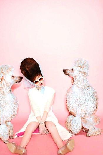 Pink! Pink Lel Fotografia I Love Dogs
