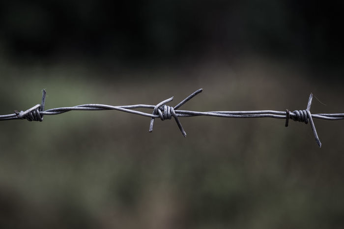 Line of barbed wire with little dust and sweat with blurred background, selective focus. Barbed Wire Jail Lines Barbed Wire Close-up Danger Day Escape Fence Focus On Foreground Linear Metal No People Outdoors Protection Razor Wire Safety Security Separation Sharp Sky Spiked
